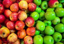 Photo of Sfaturi pentru includerea merelor într-o dietă sănătoasă