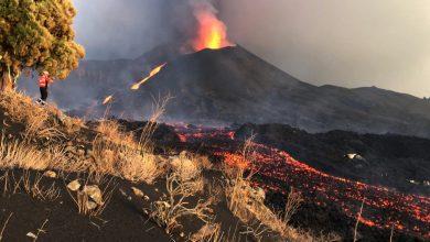 Photo of Erupția vulcanică de pe insula la Palma: Ar putea sau nu să fie evacuați câinii rămaşi blocaţi în râurile de lavă
